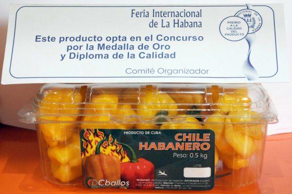 0122 chile habanero1 580x385