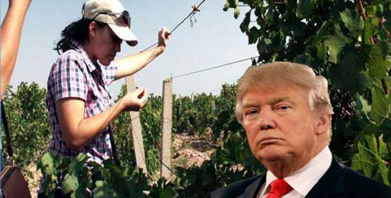 1492 1Agricultores Trump
