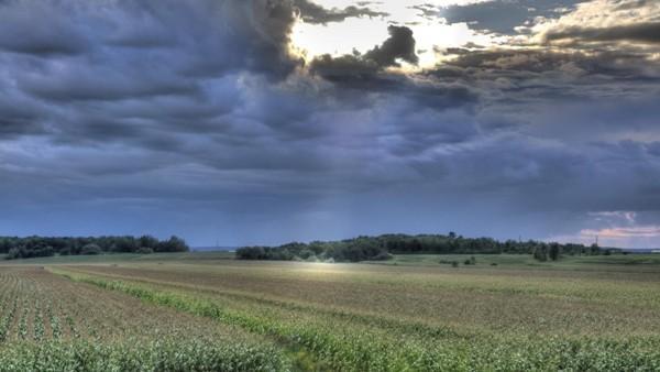 campos_lluvias