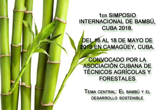 cartel simposio bambu cguey