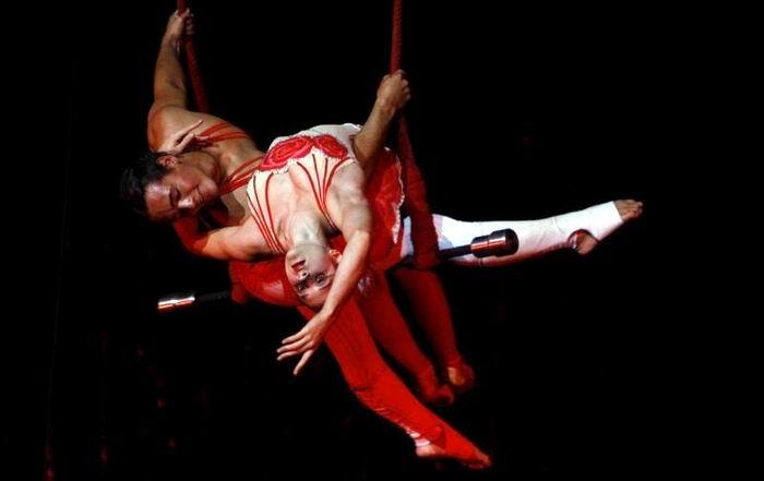 compania habana circo1