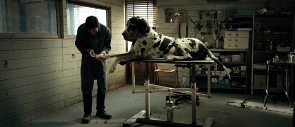 dogman filme 580x251