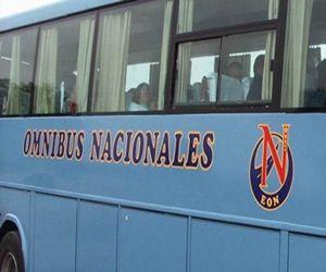 empresa de omnibus nacionales