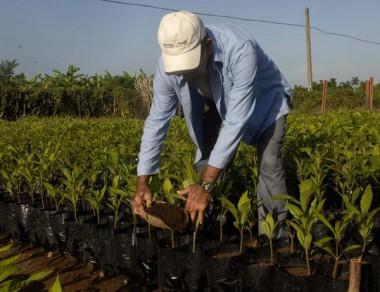 XII Encuentro Internacional de Agroecología