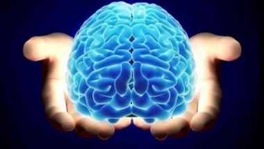 Imagen de un cerebro humano