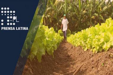Contribuye PMA a resiliencia climática y disminución de sequía en Cuba