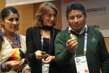 Investigadores de Bolivia, Uruguay y Cuba sobre hoja de coca