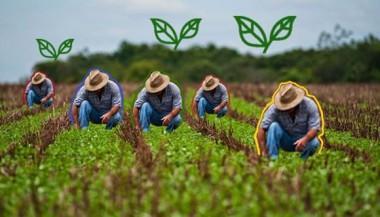 Actualizan normas jurídicas para las cooperativas del sector agropecuario