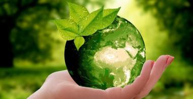 Imagen alegórica al Día mundial del medioambiente
