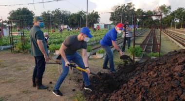 Díaz-Canel en trabajo voluntario