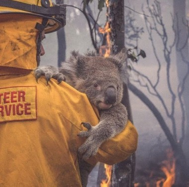 Cuba expresa profundo dolor por incendios en Australia
