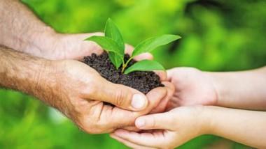 Resulta necesario el cuidado del medio ambiente. Foto: ABC.